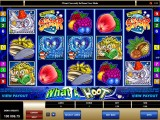 Casino online automat zdarma What a Hoot