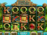 Obrázek z herního automatu Temple of Fortune online