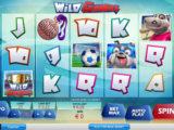 Casino automat Wild Games zdarma