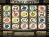 Zábavný casino automat Wild Fruits bez vkladu