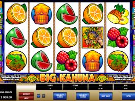 obrázek ze hry automatu Big Kahuna zdarma online