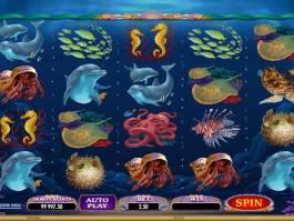 Herní automat Dolphin Quest zdarma online