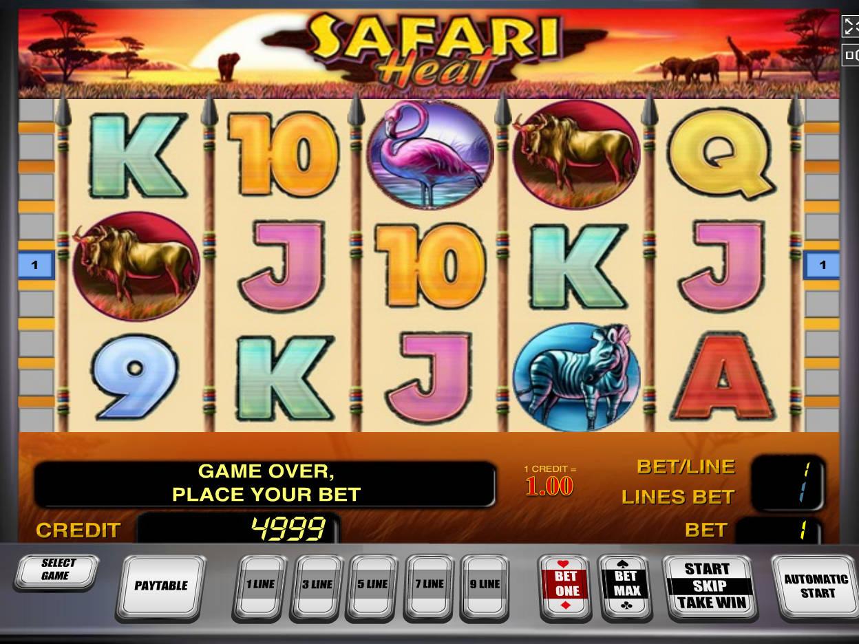 Play Safari Heat Online Pokies at Casino.com Australia