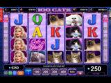 Obrázek ze hry automatu 100 Cats online