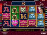 Online herní automat Diamond Cats bez vkladu