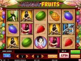 Ninja Fruits kasino automat zdarma
