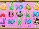 Obrázek z online casino automatu Meow Money zdarma